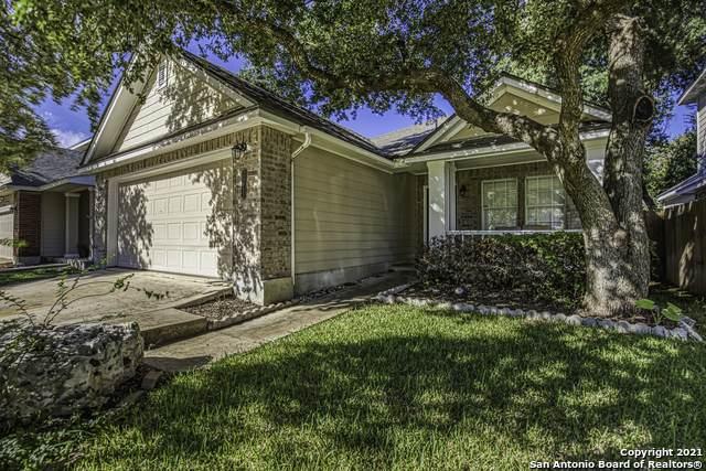 20611 Gathering Oak, San Antonio, TX 78258 (MLS #1566167) :: Carolina Garcia Real Estate Group