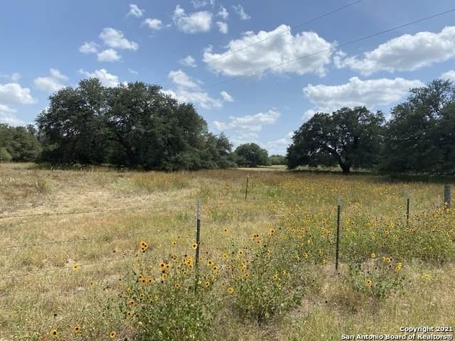 10 ACRES Wiseman Lane, La Vernia, TX 78121 (MLS #1566304) :: Concierge Realty of SA