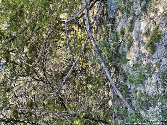 0 Tbd, Canyon Lake, TX 78133 (MLS #1566350) :: Vivid Realty