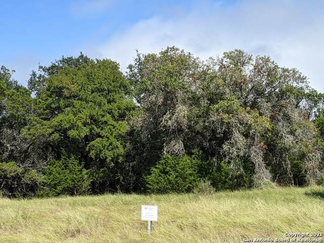 TBD Stone Gully, New Braunfels, TX 78132 (MLS #1566386) :: BHGRE HomeCity San Antonio