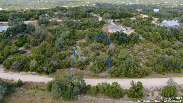 1011 Southline Dr, Spring Branch, TX 78070 (MLS #1566526) :: Phyllis Browning Company