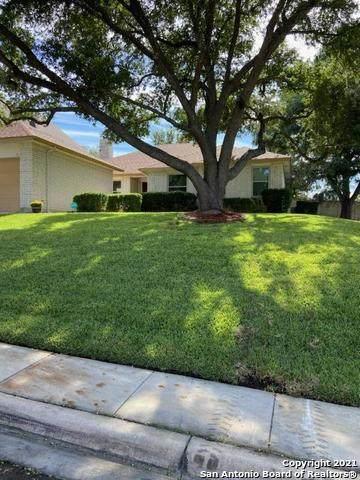 3804 Pheasant, Schertz, TX 78108 (MLS #1566577) :: The Real Estate Jesus Team