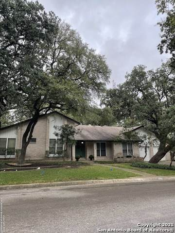 13006 Country Walk, San Antonio, TX 78216 (MLS #1566733) :: The Glover Homes & Land Group