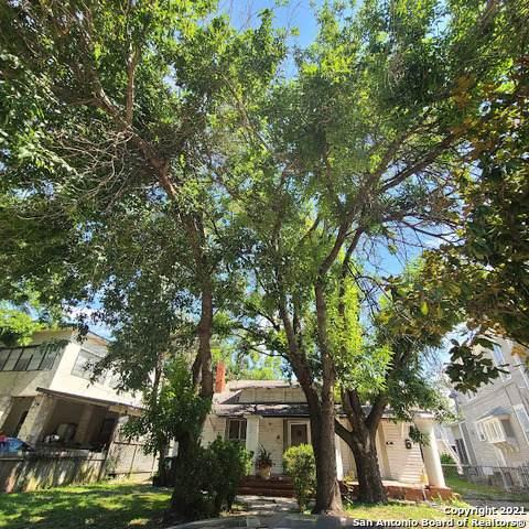 431 W Mistletoe Ave, San Antonio, TX 78212 (MLS #1566756) :: Phyllis Browning Company
