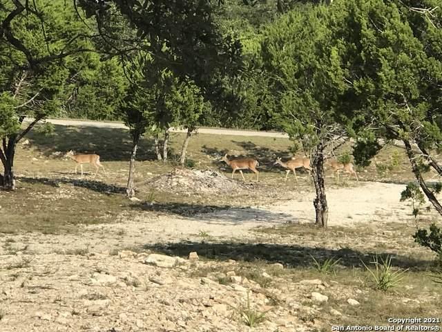 350 La Paloma Dr, Canyon Lake, TX 78133 (MLS #1566972) :: BHGRE HomeCity San Antonio