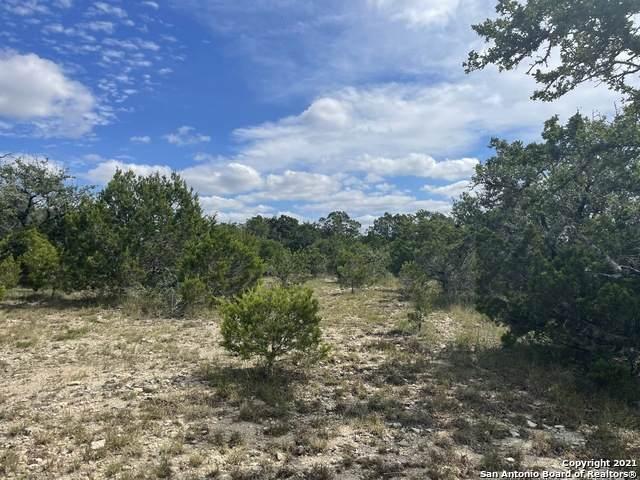 927 Primrose Path, Canyon Lake, TX 78133 (MLS #1567021) :: BHGRE HomeCity San Antonio
