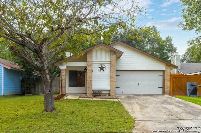 5922 Misty Glen, San Antonio, TX 78247 (MLS #1567031) :: Alexis Weigand Real Estate Group
