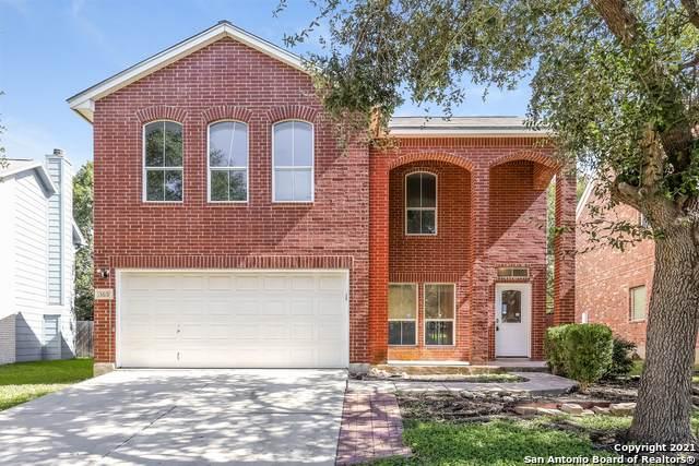 13619 Barrow Oak, San Antonio, TX 78247 (MLS #1567086) :: The Glover Homes & Land Group
