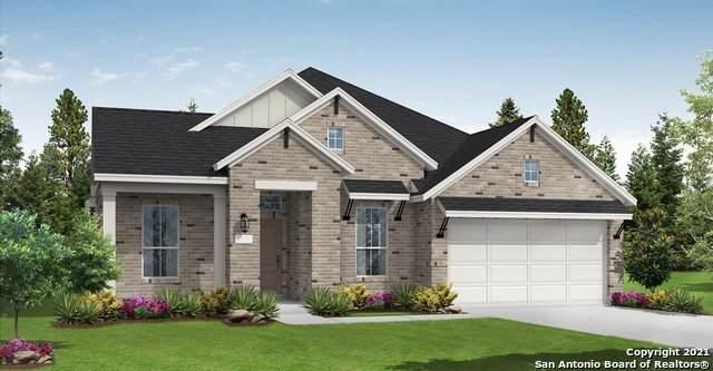 22906 Evangeline, San Antonio, TX 78258 (MLS #1567245) :: Beth Ann Falcon Real Estate