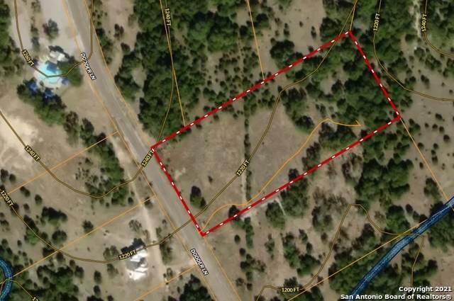 99 Dodder Ln, Spring Branch, TX 78070 (MLS #1567302) :: The Real Estate Jesus Team