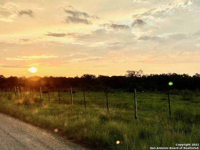 2084 (LOT 3) County Road 421, Stockdale, TX 78160 (MLS #1567358) :: Phyllis Browning Company
