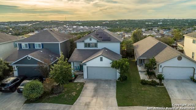 24259 Saffron Plum, San Antonio, TX 78261 (MLS #1567392) :: Beth Ann Falcon Real Estate
