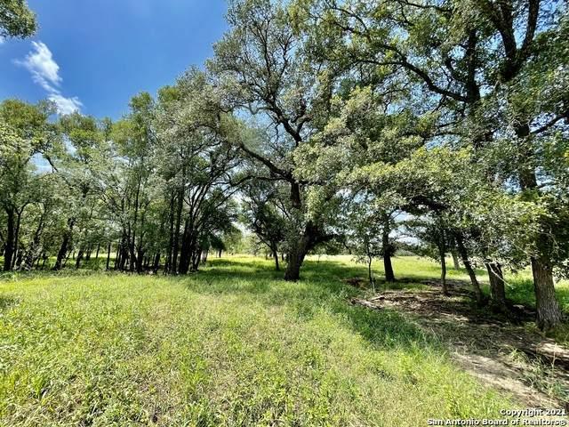 167 Cannon Creek Drive, Gonzales, TX 78629 (MLS #1567441) :: BHGRE HomeCity San Antonio