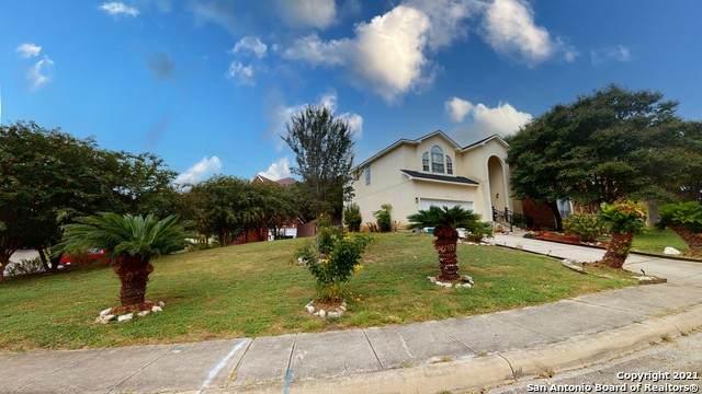 20819 El Suelo Bueno, San Antonio, TX 78258 (MLS #1567458) :: The Real Estate Jesus Team