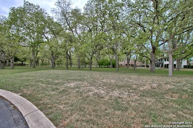 127 Milagros, Seguin, TX 78155 (MLS #1567473) :: Carter Fine Homes - Keller Williams Heritage