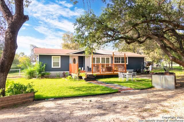 577 County Road 770, Natalia, TX 78059 (MLS #1567647) :: Exquisite Properties, LLC