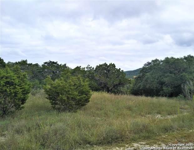 197 Private Road 1730, Mico, TX 78056 (#1567717) :: Zina & Co. Real Estate