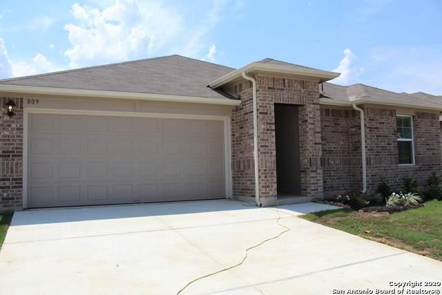 809 Margay Loop, Seguin, TX 78155 (MLS #1567731) :: Beth Ann Falcon Real Estate