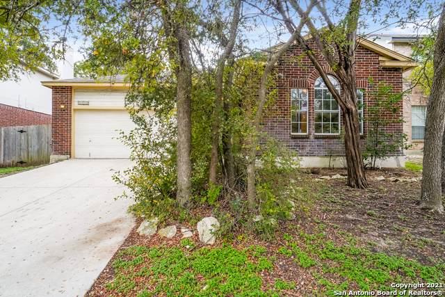 4330 Knollpass, San Antonio, TX 78247 (MLS #1567733) :: Beth Ann Falcon Real Estate