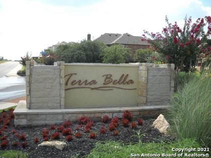 24002 Viento Oaks, San Antonio, TX 78260 (MLS #1567795) :: Carter Fine Homes - Keller Williams Heritage