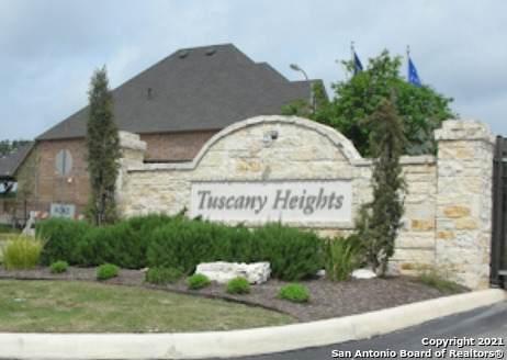 24810 Chianti Way, San Antonio, TX 78259 (MLS #1567820) :: Carter Fine Homes - Keller Williams Heritage