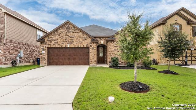 2016 Stepping Stone, New Braunfels, TX 78130 (#1567827) :: The Perry Henderson Group at Berkshire Hathaway Texas Realty