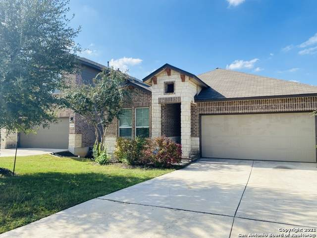 22419 Akin Fawn, San Antonio, TX 78261 (#1567878) :: Zina & Co. Real Estate