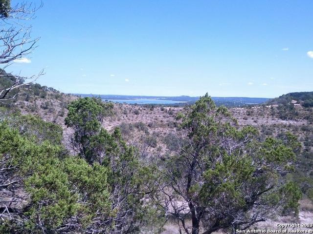 0 Hinch Dr, Canyon Lake, TX 78133 (MLS #1019621) :: Erin Caraway Group