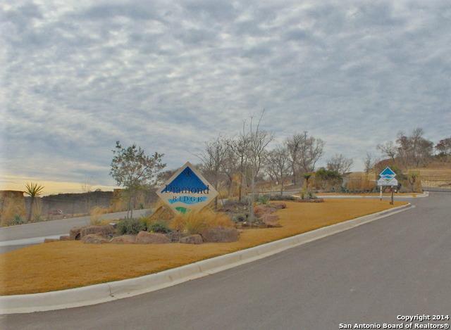 LOT 112 Diamond Ridge Drive, Boerne, TX 78006 (MLS #1082106) :: Magnolia Realty