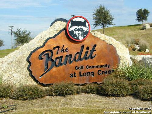 113 Donald Ross Pl, New Braunfels, TX 78130 (MLS #1105038) :: Tom White Group