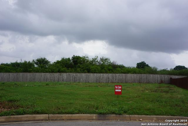 14005 Amalfi Park, Live Oak, TX 78233 (MLS #1122883) :: Magnolia Realty