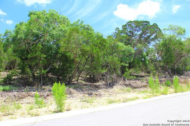 3815 Smithson Ridge, San Antonio, TX 78261 (MLS #1131592) :: Exquisite Properties, LLC