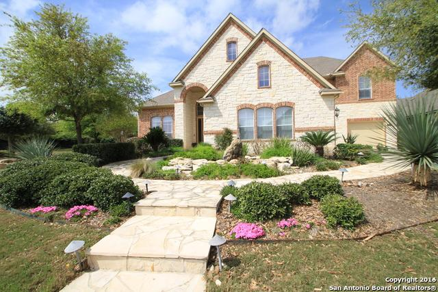 21803 Burbank Hill, San Antonio, TX 78256 (MLS #1168499) :: Alexis Weigand Real Estate Group