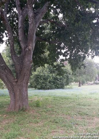 00 Rio Grande Dr, Seguin, TX 78155 (MLS #1194282) :: Magnolia Realty