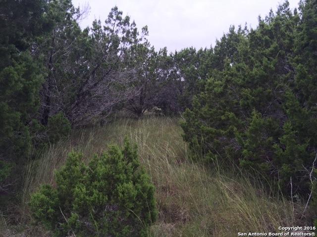 286 Lakepark Dr, Lakehills, TX 78063 (MLS #1198796) :: Magnolia Realty