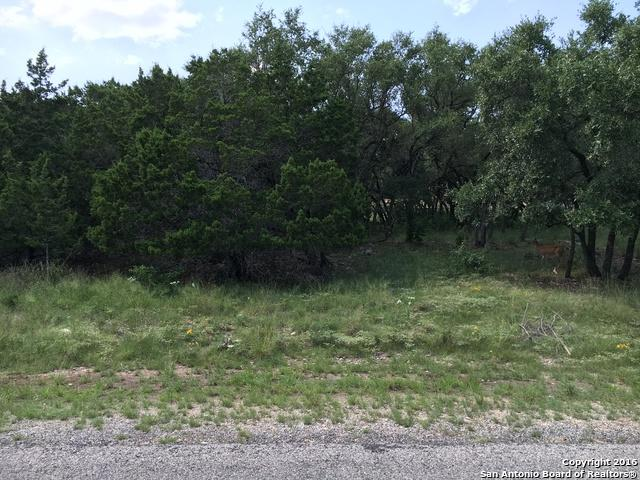 1422 Hillcrest Forest, Canyon Lake, TX 78133 (MLS #1198851) :: Exquisite Properties, LLC