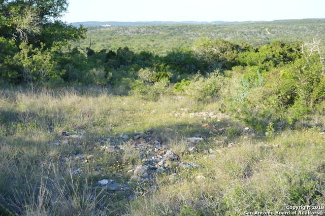 LOT 157 County Road 2801, Mico, TX 78056 (MLS #1203142) :: Erin Caraway Group