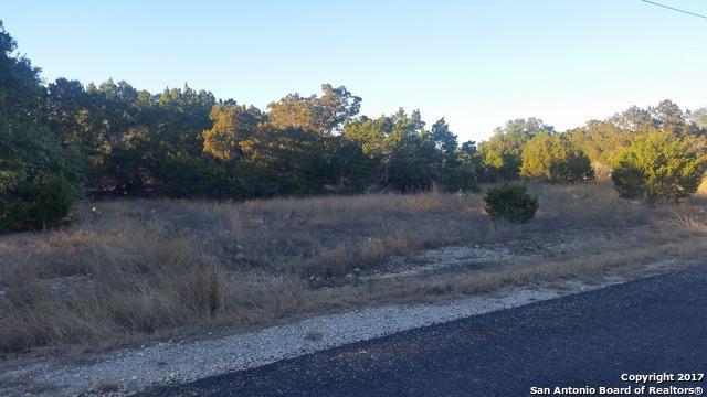 730 Rayner Ranch Blvd, Spring Branch, TX 78070 (MLS #1218124) :: Magnolia Realty
