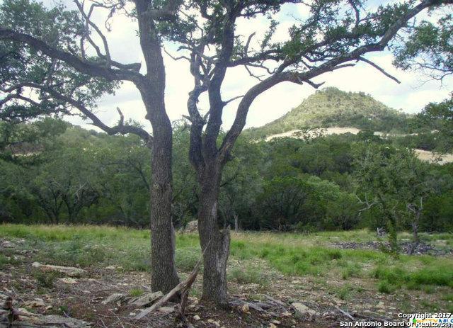 2432 Triple Peak Dr, Canyon Lake, TX 78133 (MLS #1245560) :: Berkshire Hathaway HomeServices Don Johnson, REALTORS®