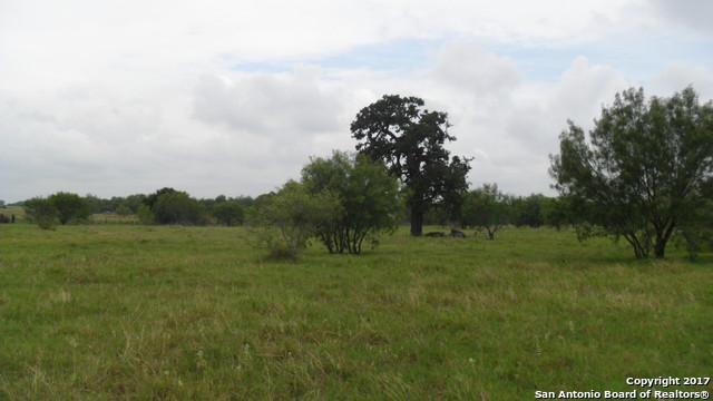 LOT 30 S Fm 2790, Somerset, TX 78069 (MLS #1246302) :: Magnolia Realty