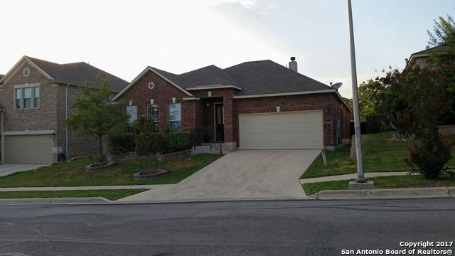 217 Springtree Ln, Cibolo, TX 78108 (MLS #1263326) :: Ultimate Real Estate Services