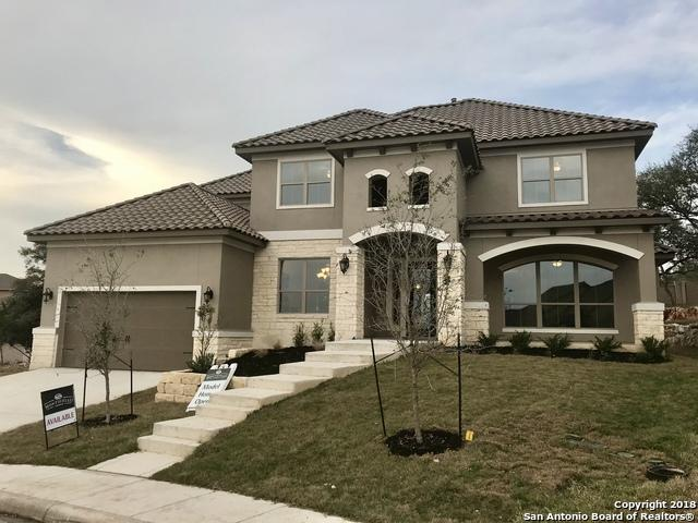 24127 Vecchio, San Antonio, TX 78260 (MLS #1264308) :: The Castillo Group