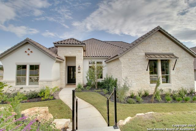 24003 Vecchio, San Antonio, TX 78260 (MLS #1264310) :: The Castillo Group