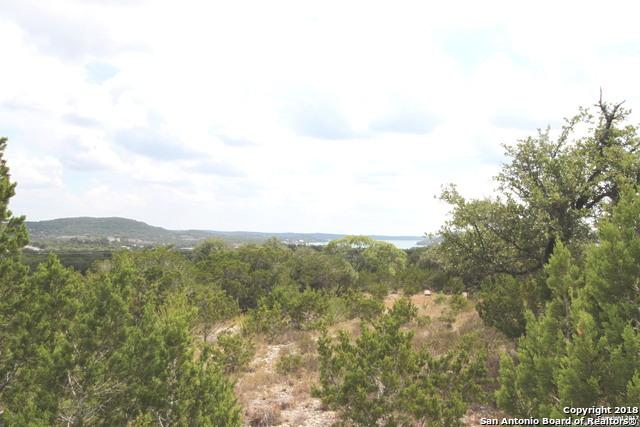 LT 41A Scenic Sunset, Lakehills, TX 78063 (MLS #1270248) :: Reyes Signature Properties