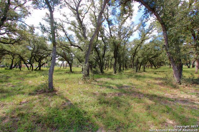 132 Bridge Water Dr., La Vernia, TX 78121 (MLS #1271405) :: Magnolia Realty