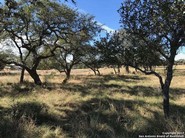 1644 Lake Ridge Blvd, Canyon Lake, TX 78133 (MLS #1273095) :: Magnolia Realty