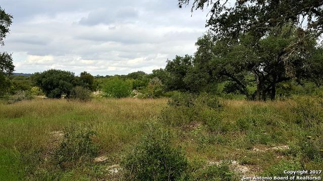 1619 Easton St, San Antonio, TX 78253 (MLS #1275015) :: Tami Price Properties, Inc.