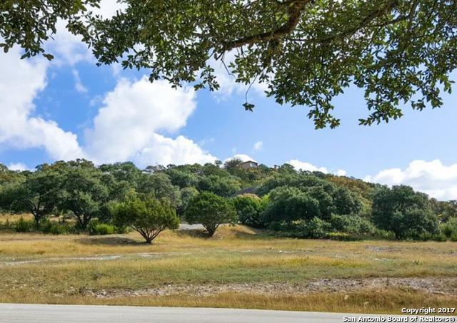 BLK 2 LOT 5A Antelope Hill, Boerne, TX 78006 (MLS #1279477) :: Alexis Weigand Group
