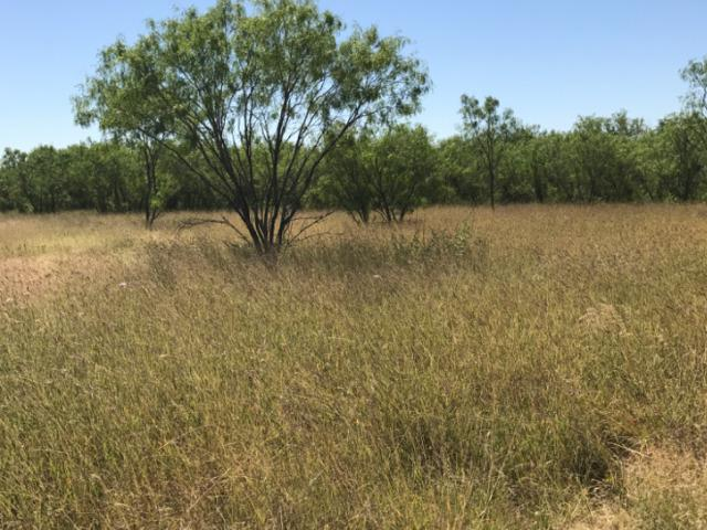 38.4 ACRES Ih 35, Moore, TX 78057 (MLS #1279879) :: The Castillo Group
