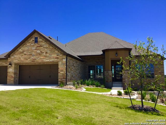 21334 Rembrandt Hl, San Antonio, TX 78256 (MLS #1279935) :: The Castillo Group